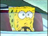 Spongebob_driving